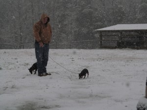 Nelson and dogs in snow